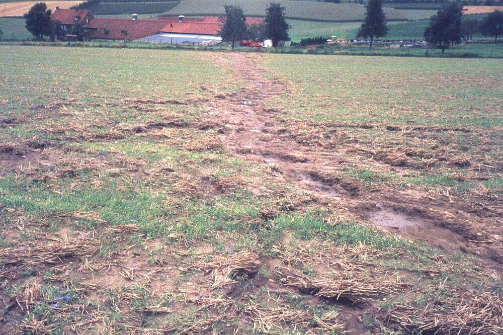 Post Photo for Pilot Project Will Assist Iowa Farmers