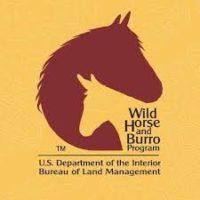Wild Horse and Burro Program