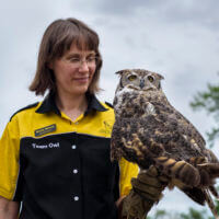 International Owl Awareness Day Celebration August 3, 2019